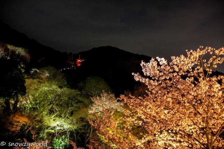 Japan17-0574
