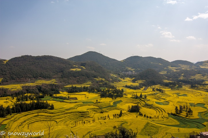 Yunnan2017-0087