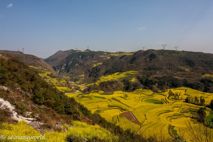 Yunnan2017-0090