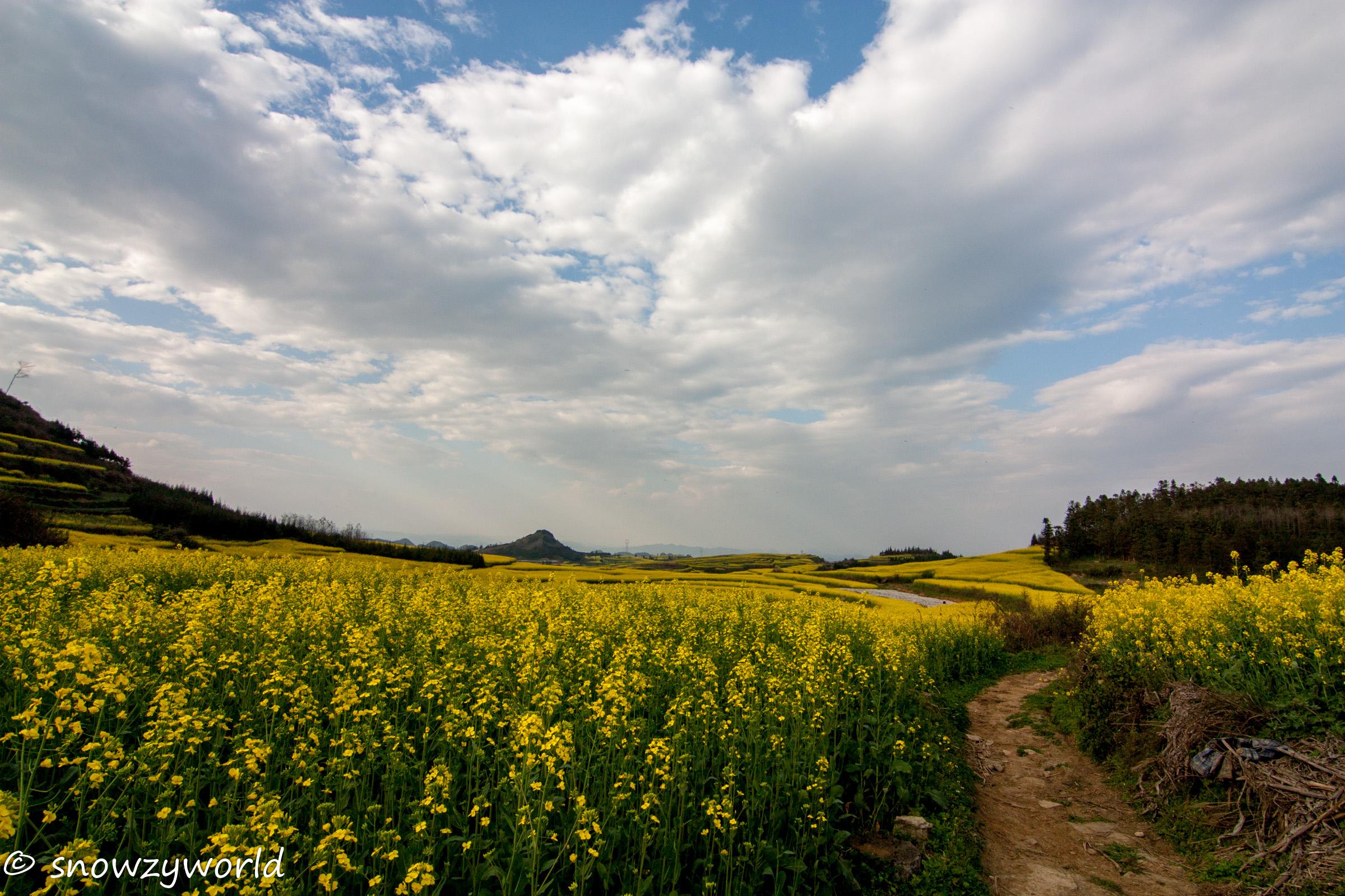 Yunnan2017-0103