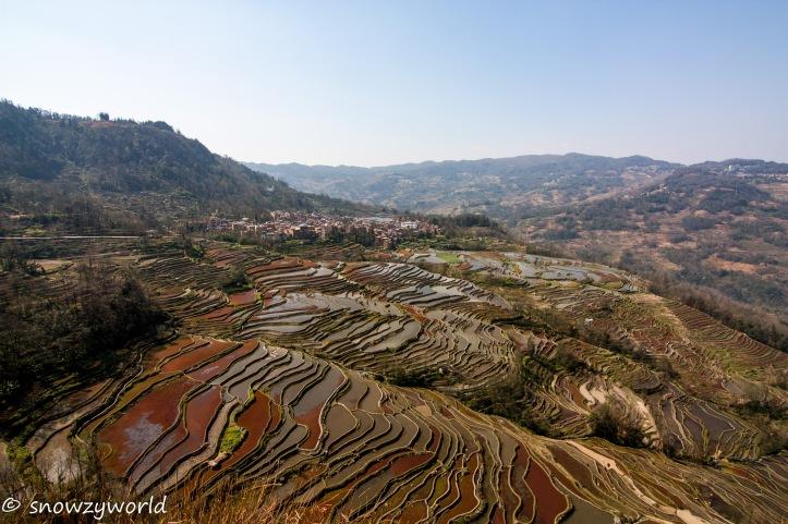 Yunnan2017-0224