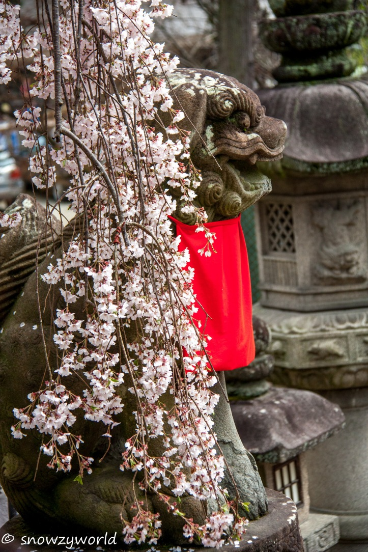 Japan17-0338