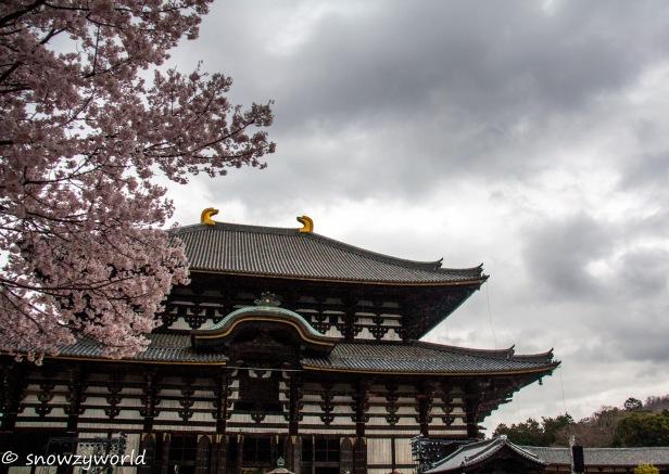 Japan17-0353